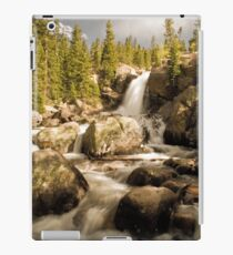 Alberta iPad Case/Skin