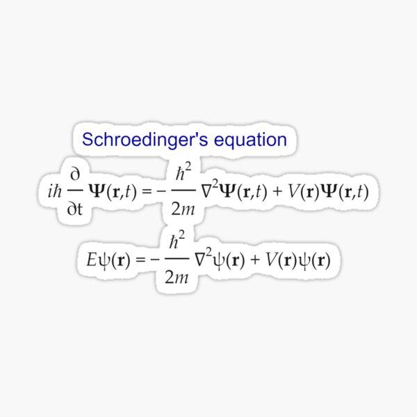 #Schrödinger #Equation,  #Quantum #Physics, Wave Function, Quantum Mechanics  Sticker