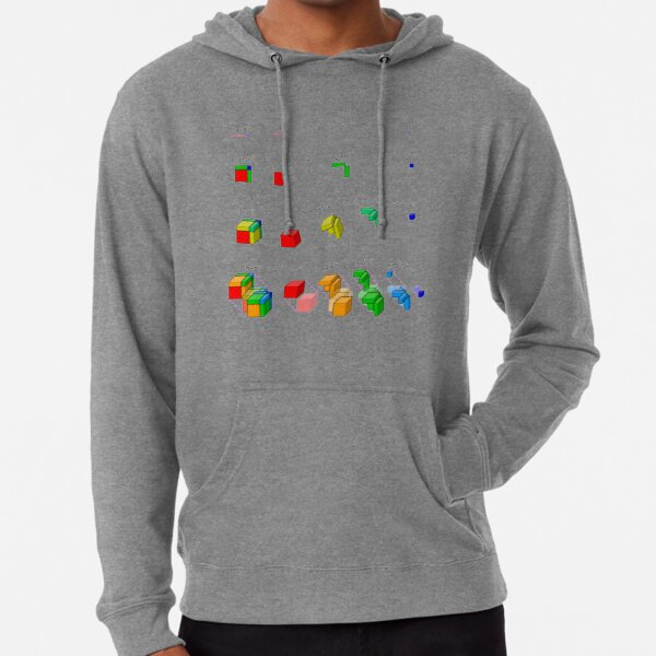 #Visualization of #binomial #expansion up to the 4th #power, binomial theorem Lightweight Hoodie