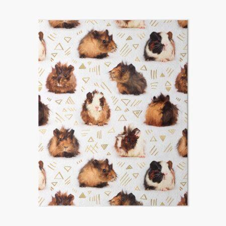 The Essential Guinea Pig Art Board Print