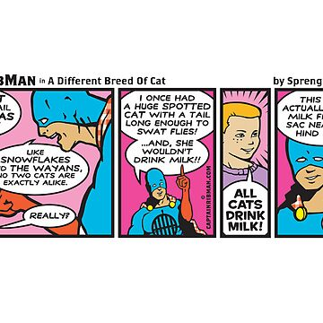 A Different Breed of Cat by RibMan