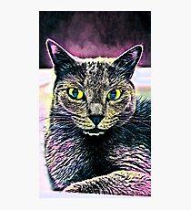 CAT ART Fotodruck