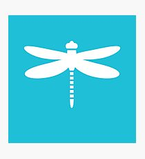 Dragonfly (white on blue) Photographic Print