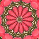 A Christmas Rose Tile by Sherry Durkin