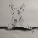 English Bull Terrier Biro Portrait Scribble Pets by Pasha by goddamnmedia