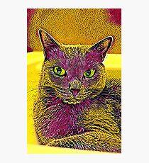 CAT ART PINKGELB Fotodruck