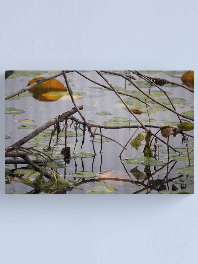 Alternate view of Near the Shore Canvas Print