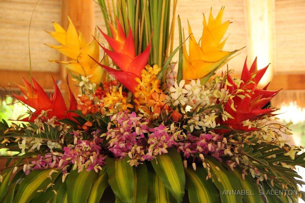 TROPICAL  FLOWERS by ANNABEL   S. ALENTON