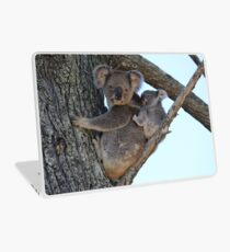Baby Koala Bear Laptop Skin