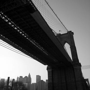winter afternoon, east river, dumbo, nyc by bodhiimages