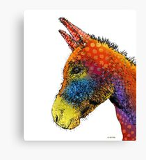 Colorful Donkey Canvas Print