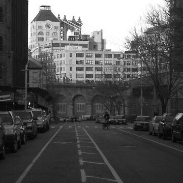 suburbia, brooklyn heights by bodhiimages
