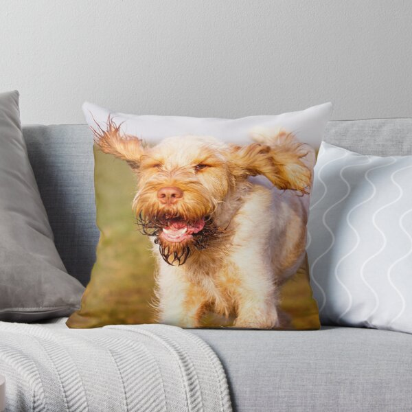 Laughing with flying ears Spinone Throw Pillow