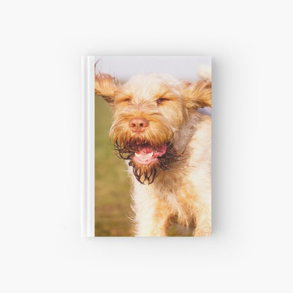 Laughing with flying ears Spinone Hardcover Journal