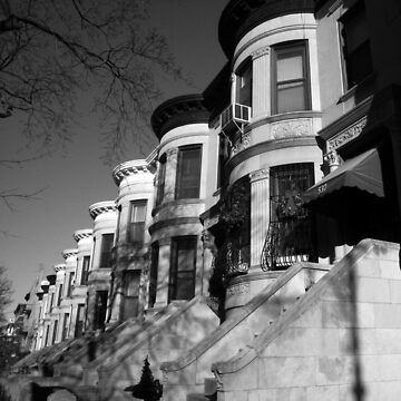 brown stone, park slope, brooklyn  by bodhiimages
