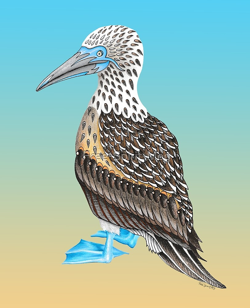 Blue Footed Booby Totem by Free-Spirit-Meg