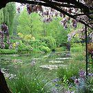 Monet's Garden (Giverny, France) by Christine Oakley