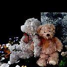 Teddy Bear Buddies by Beth Brightman