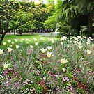 Jardin du Luxembourg (Paris, France) by Christine Oakley