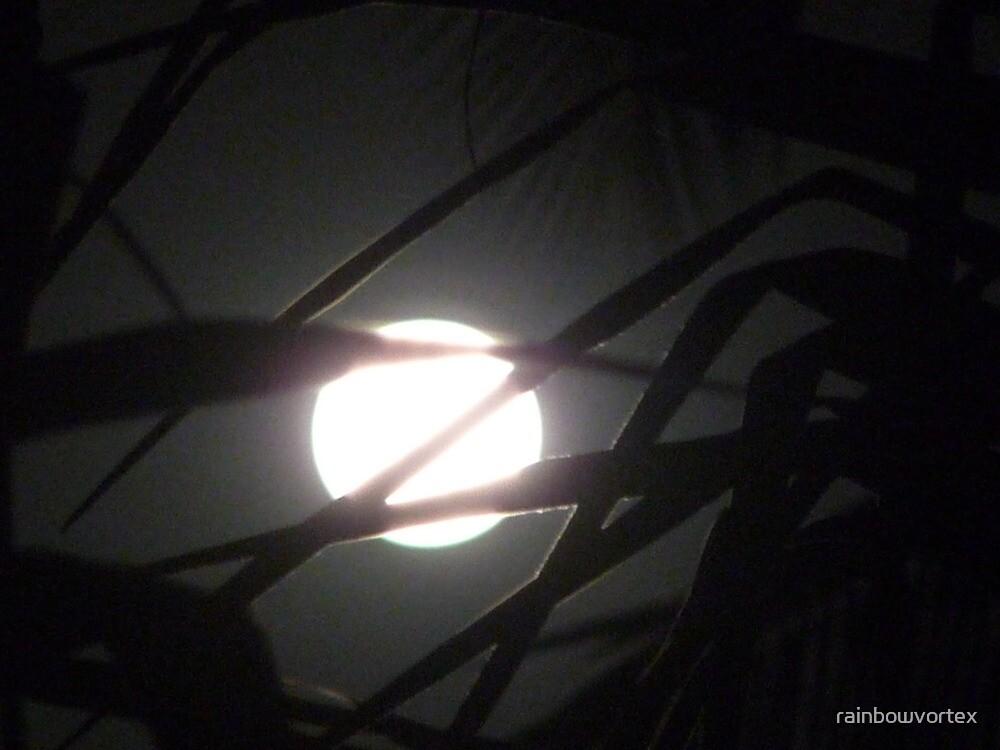 zorro moon by rainbowvortex