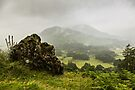 Atmospheric Patterdale by David Lewins