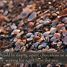 Choiceless as a beach... by EvaBridget
