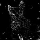 Spider-web by henrikn