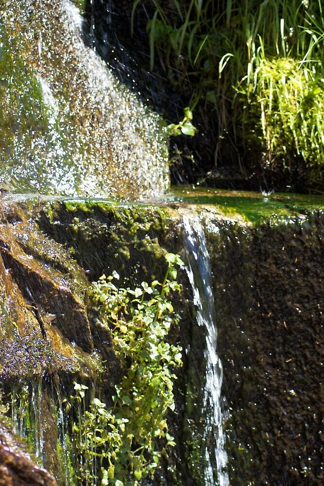 Like Streams of Water in the Desert by J.K. Sanchez