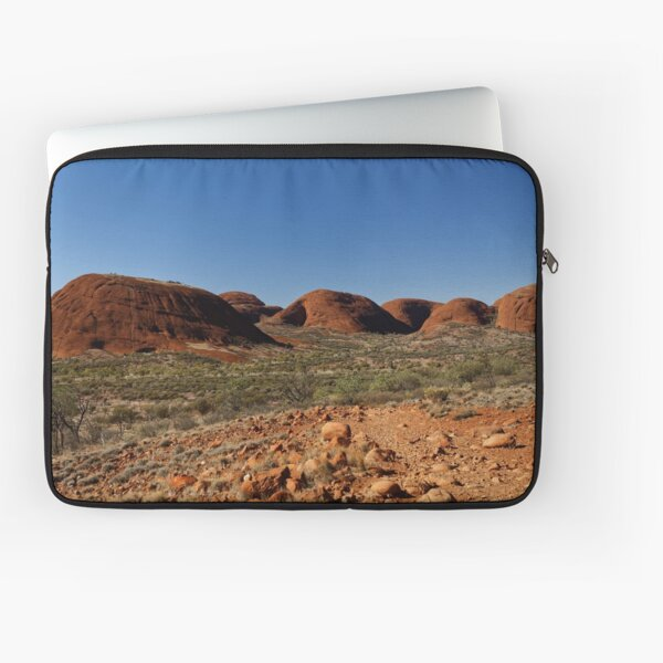 Beyond the Valley of the Winds Laptop Sleeve