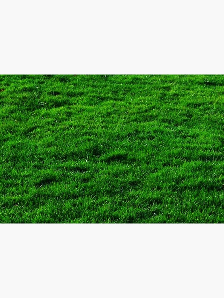 GREEN GREEN GRASS. LAWN. PITCH. by TOMSREDBUBBLE