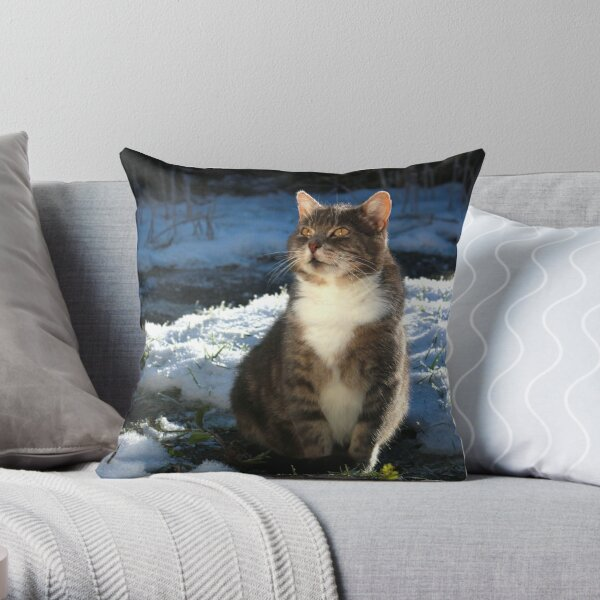 Winter cat Throw Pillow