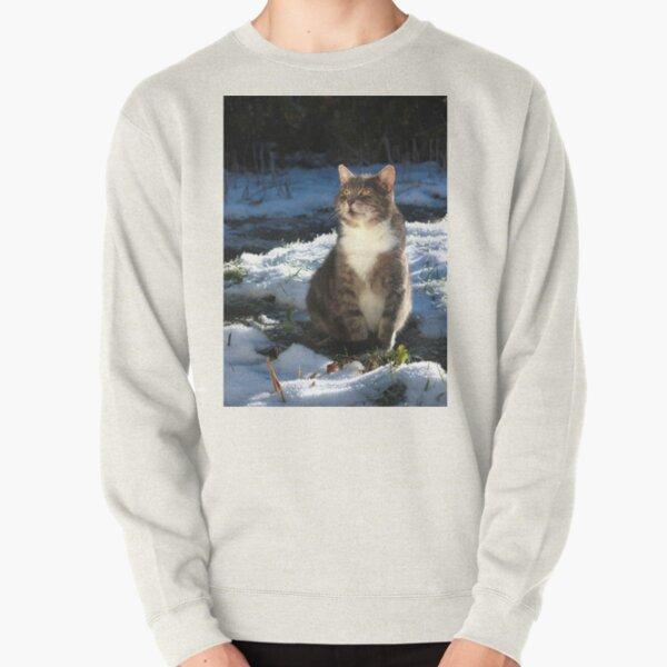 Winter cat Pullover Sweatshirt