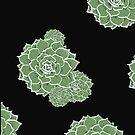 'Succulent' by Stringer Things (Hannah Stringer) by stringerthings
