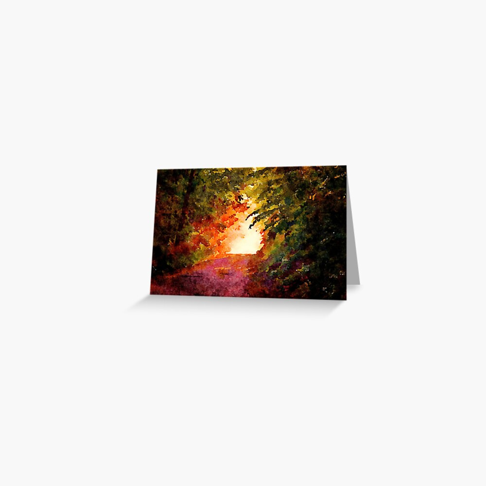 Sunlight in the woods Greeting Card