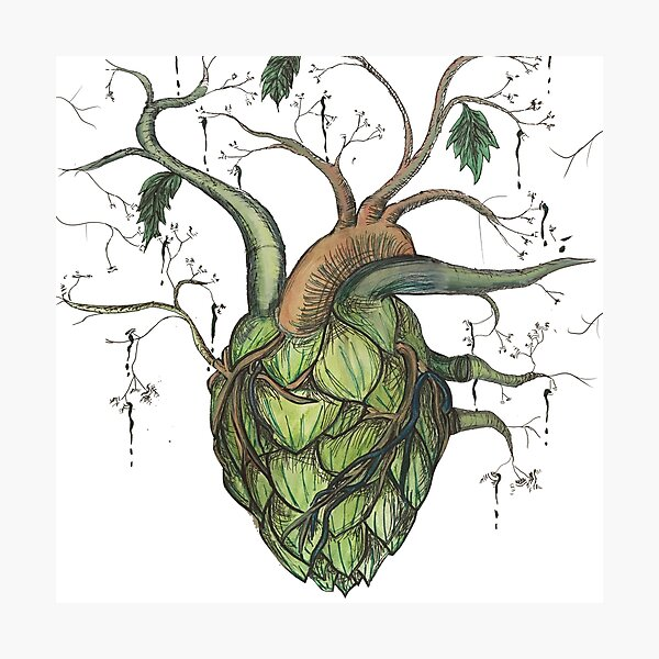 Hops Heart Photographic Print
