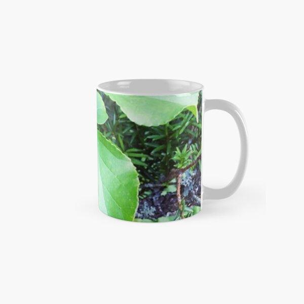 Indigenous Boothbay Treasure: Leaves Classic Mug