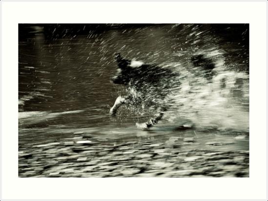 Let's move some water by Karen Havenaar