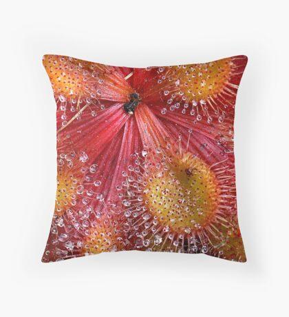 Red Sundew Throw Pillow