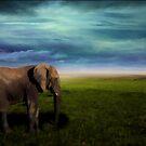 Elephant Trek by ChiaraLily