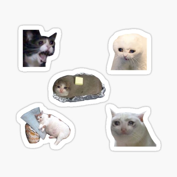 Crying Cat stickers Sticker
