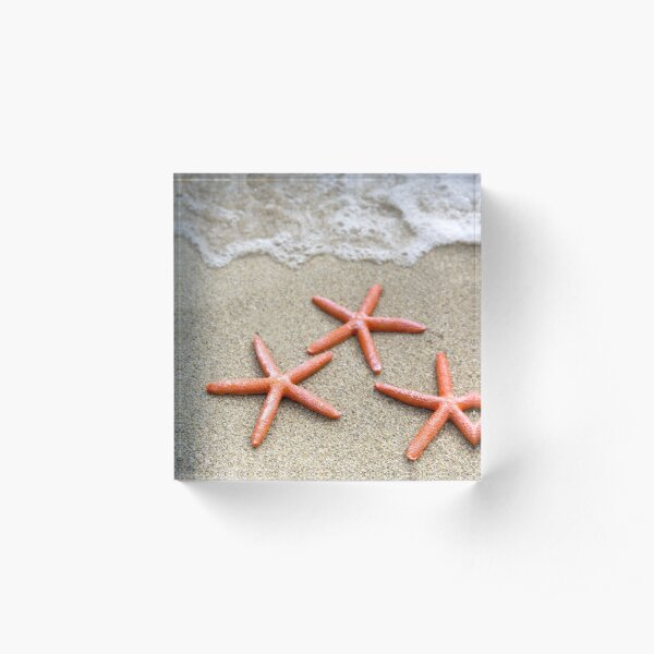 Stunning Seashore Collection - Starfish 3 Acrylic Block