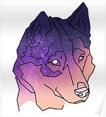 Husky Wolf Sunset Galaxy Poster