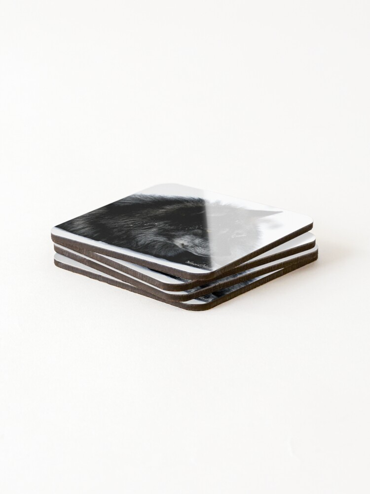 Alternate view of Don't Wake Resting Wolves Coasters (Set of 4)