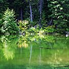 Reflecting- Cle Elum,Wa by Terrie Taylor