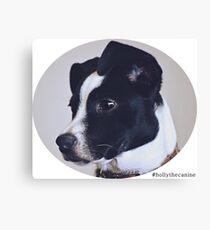 Holly the canine portrait Canvas Print