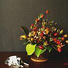 Rosehips by Gilberte