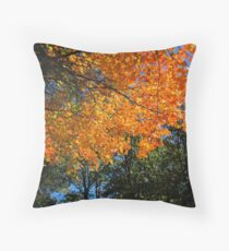Beauty in the Front Yard Throw Pillow