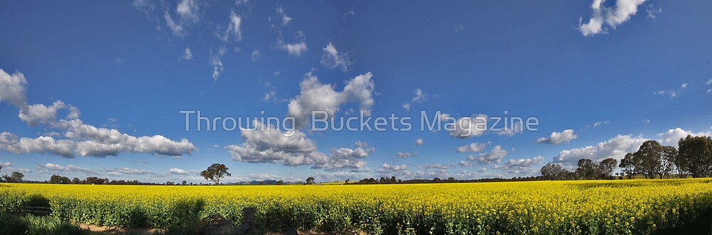 yellow fever by Throwing  Buckets Magazine