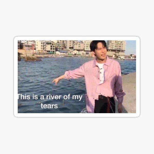 NCT Doyoung Meme Pegatina