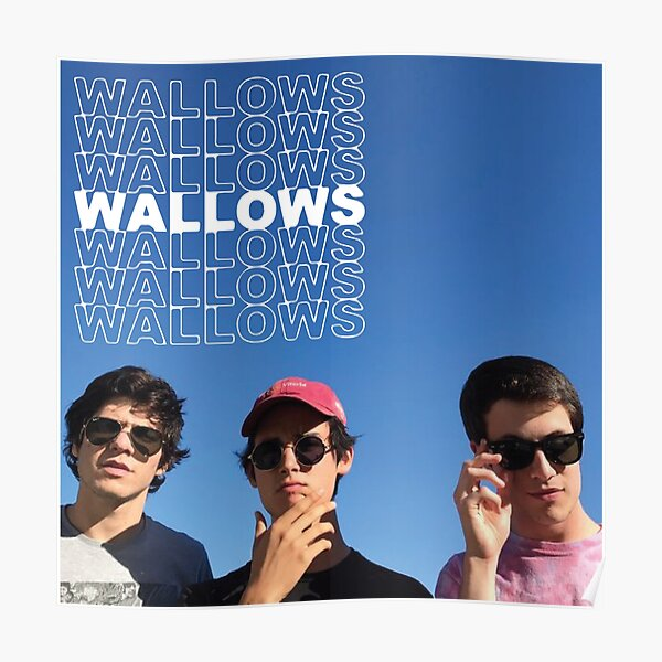 WALLOWSWALLOWSWALLOWS Póster